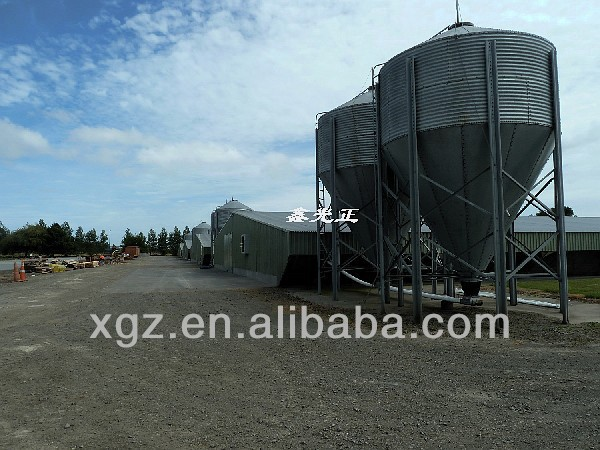 design turnkey for poultry farm feed project