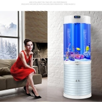 HaiLiy eco-friendly large acrylic cylinder vertical tube akvariun fish tank for betta fish live