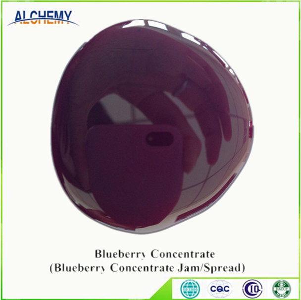 ALCHEMY Wild Blueberry Concentrate
