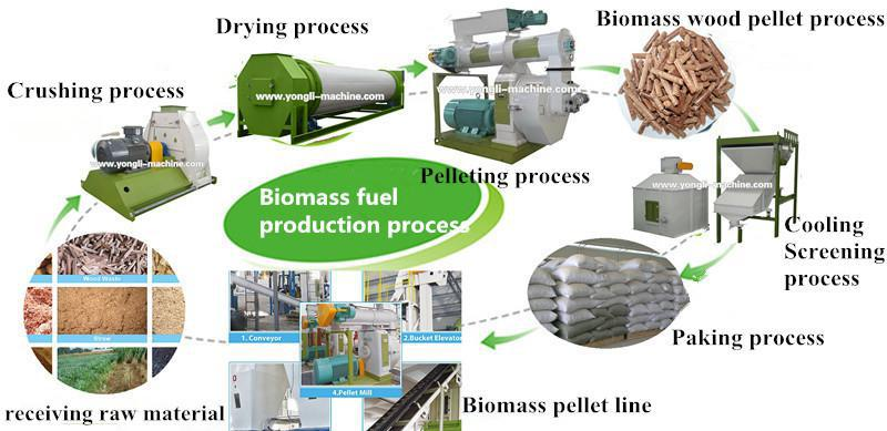 Biomass Pellet Production ~ Hot sale in europe ce sunflower seed husk pellet mill