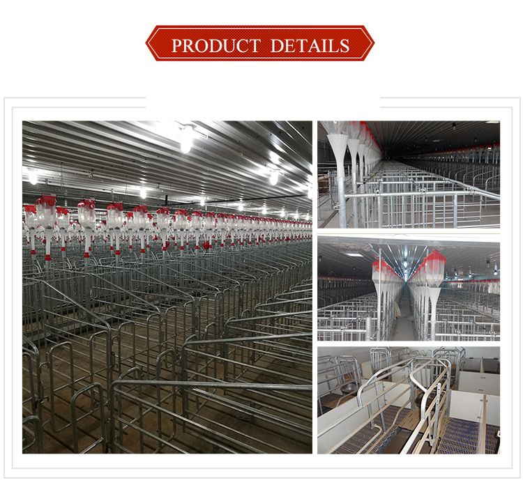 Sow crate design galvanized gestation stall box