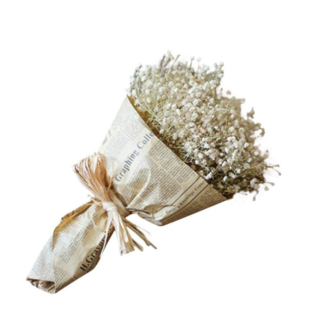 Rucan Gypsophila Natural Dried Flower Baby's Breath Home Decor Dried Flower Sky Star (A)