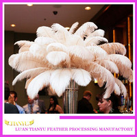 wholesale 65-70cm cheap white ostrich feathers for sale