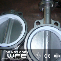 Cast Steel Dual Plate Check Wafer Type Metal Butterfly Valve