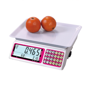 HYW201C high quality LCD 30kg electronic digital price table scale