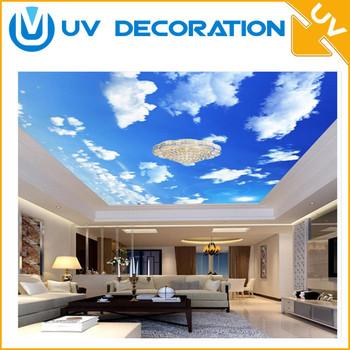 Blue Sky Interior Decoration Plastic Ceiling Tiles Clear Pvc Panel