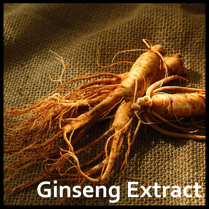 Ginseng Root/Korean Red Ginseng Root/Ginseng Powder