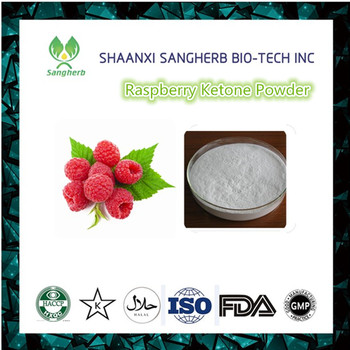 Weight Loss&Fat Burner Pure Natural Raspberry Extract Powder Raspberry Ketone lean