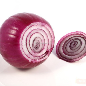 red onion importers in singapore onion holland red onion seeds price