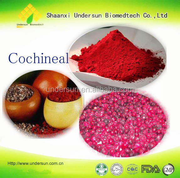 facotymanufacture supply nature food colorant cochineal carminecarmine e120 - Colorant E120