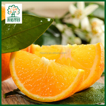 Orange fruit plus sweets, export fresh fruits