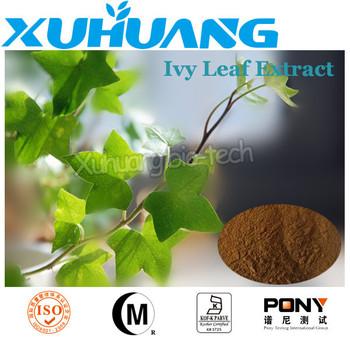 organic ivy leaf extract powder/high quality ivy leaf extract/ivy leaf extract powder