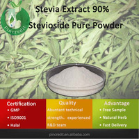 Stevioside Powder/Stevia/Stevia Extract 90% Stevioside Pure Powder
