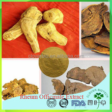 Pure natural herb extract Rhein 95% Rhubarb Root extract