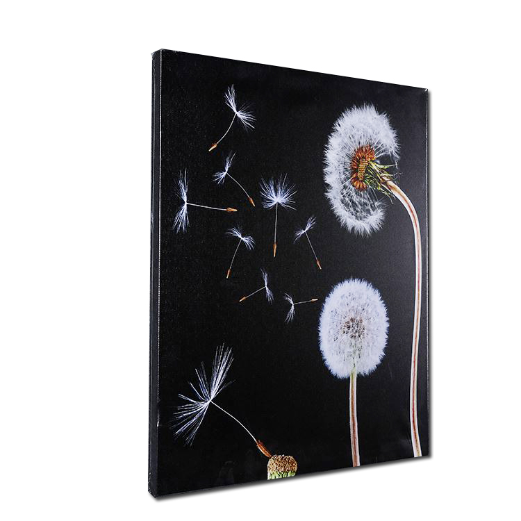 Black and white art dandelion picture Home Goods Bedroom Wall Art Canvas Painting Reproduction Paintings China