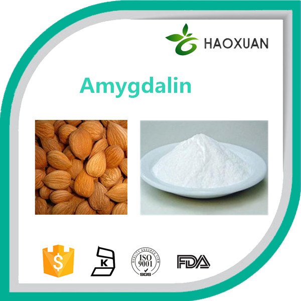 Direct producer apricot kernel extract amygdalin powder / vitamin b17
