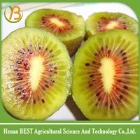 Golden suppliers from China red kiwi fruit,small kiwi fruit,sweet kiwifruit
