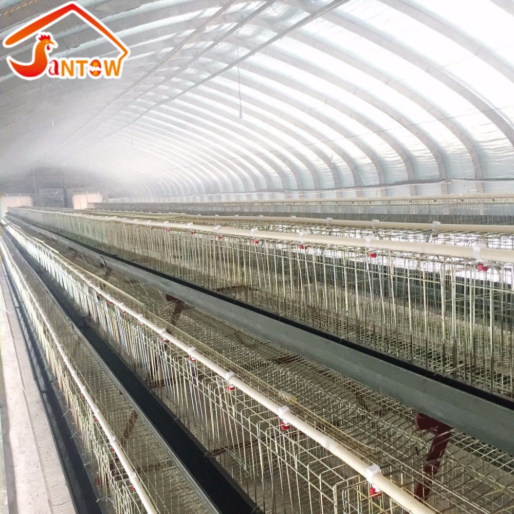 Best Sale Dar Es Salaam Tanzania Poultry Farm Layer Design Chicken Nipple Cages For Sale