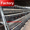 Hot sale 3 tiers 5 doors chicken cage system with automatic system