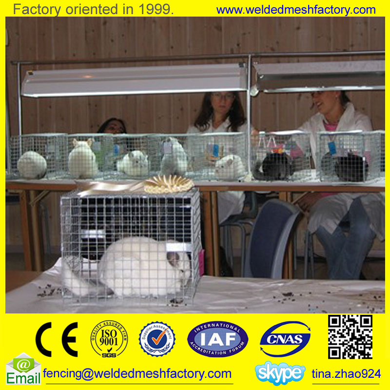 Hot dipped galvanized chinchilla cage/rat cage/pet cage