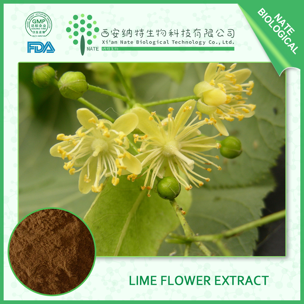 Pure natural Lime Flower Extract Powder 10:1 Linden Flower Extract