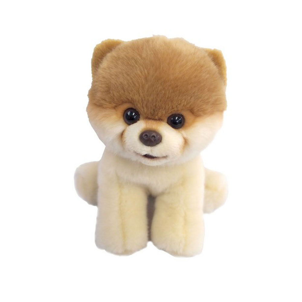 Boo The Dog Toy Clothes