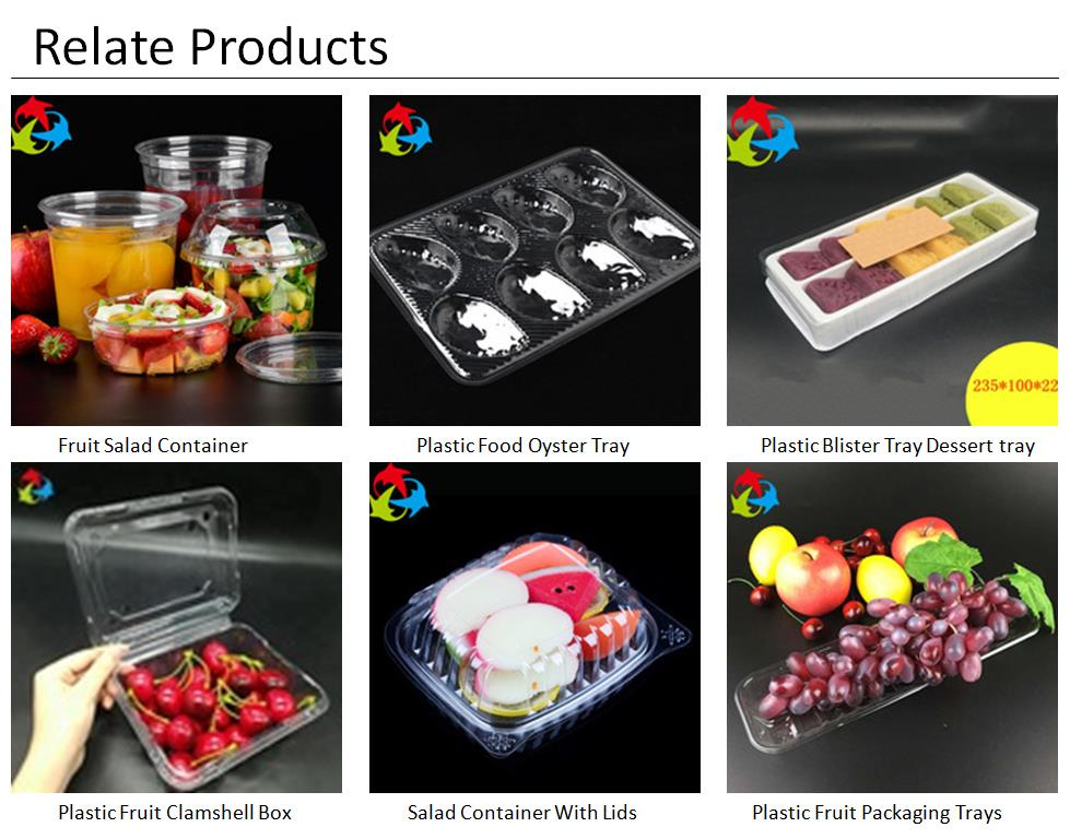 Factory Price Disposable Clear Plastic Packaging Cosmetic Box