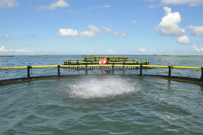high quality HDPE fish cage floating in lakes for sale