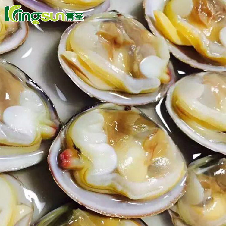 With / Without Shell Frozen Boiled Baby Clams