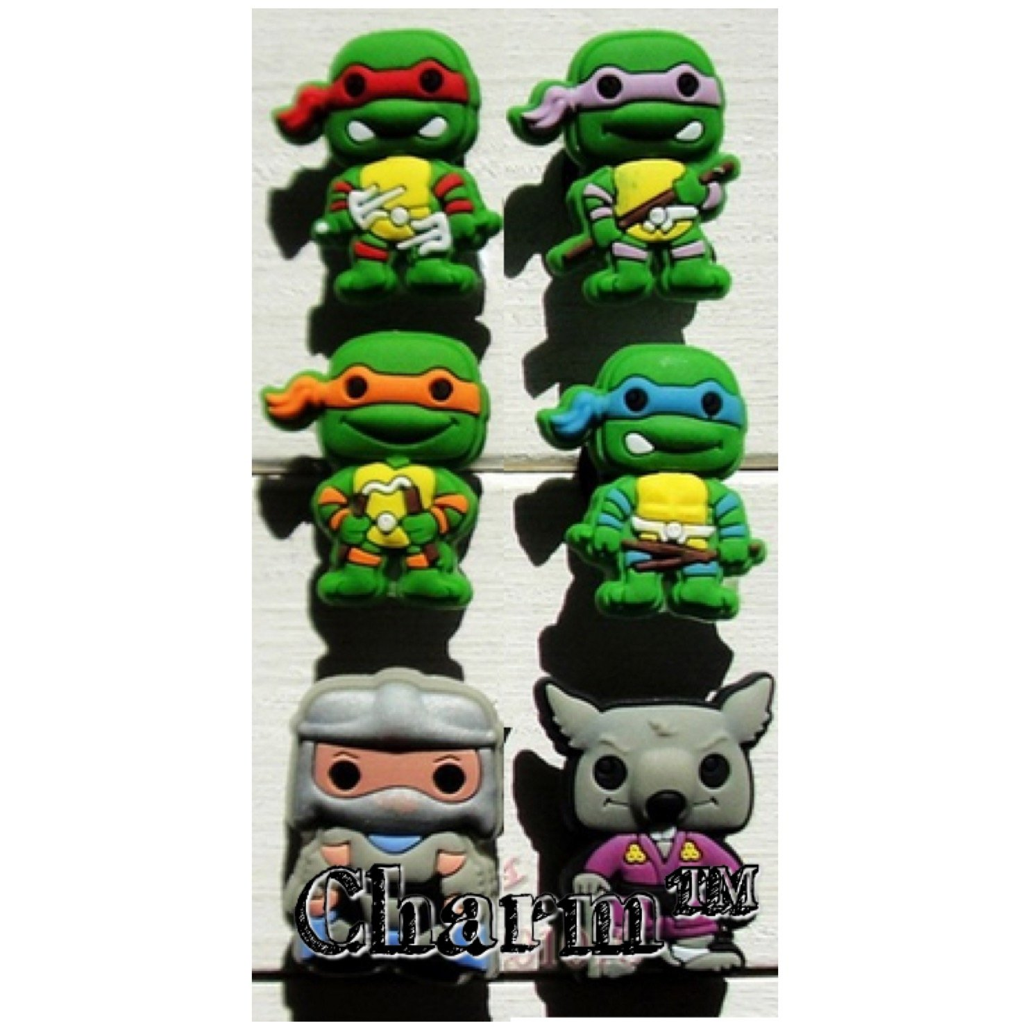 Turtles Set of 6 Shoe Charms Assorted PVC Crocs Natives (Generic) Boy Birthday Party Favors by CharmTM