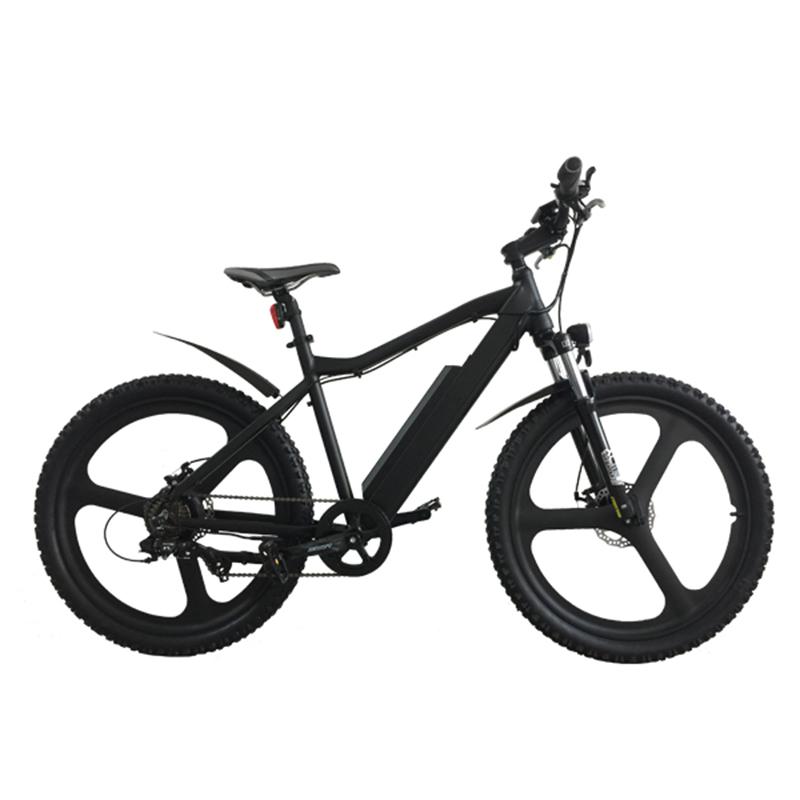 Distributors Wanted Electric Bike Distributors Wanted Electric Bike