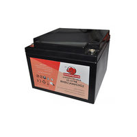 AGM Toy car Real Capacity lead acid battery 12 volt 20 amp battery