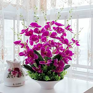 Nearly Natural Décor Artificial Silk Flower Decorative Silk Flower Arrangement with acrylic Vase, Butterfly Orchid (Purple)