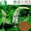 Health herb extract/GMP factory supply black cohosh herb powder/Black Cohosh P.E BLC-Tritepene2.5%,8% HPLC