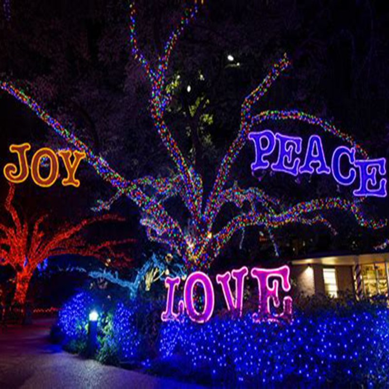 Outdoor Christmas Lights Led With