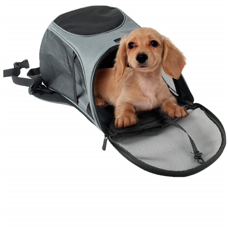 pet dog backpack 08.jpg