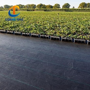 Agricultural Greenhouse Black PP Woven WeedMat Weed Control Fabric Mat plastic pp anti weed agro weed control barrier