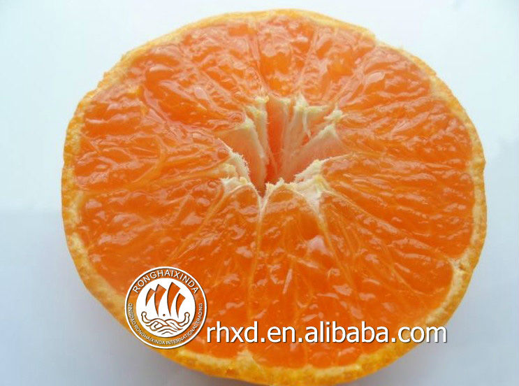 Fresh citrus Orange