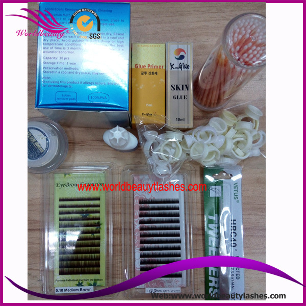 China Golden Supplier For Professional Eyebrow Extension Kits ...