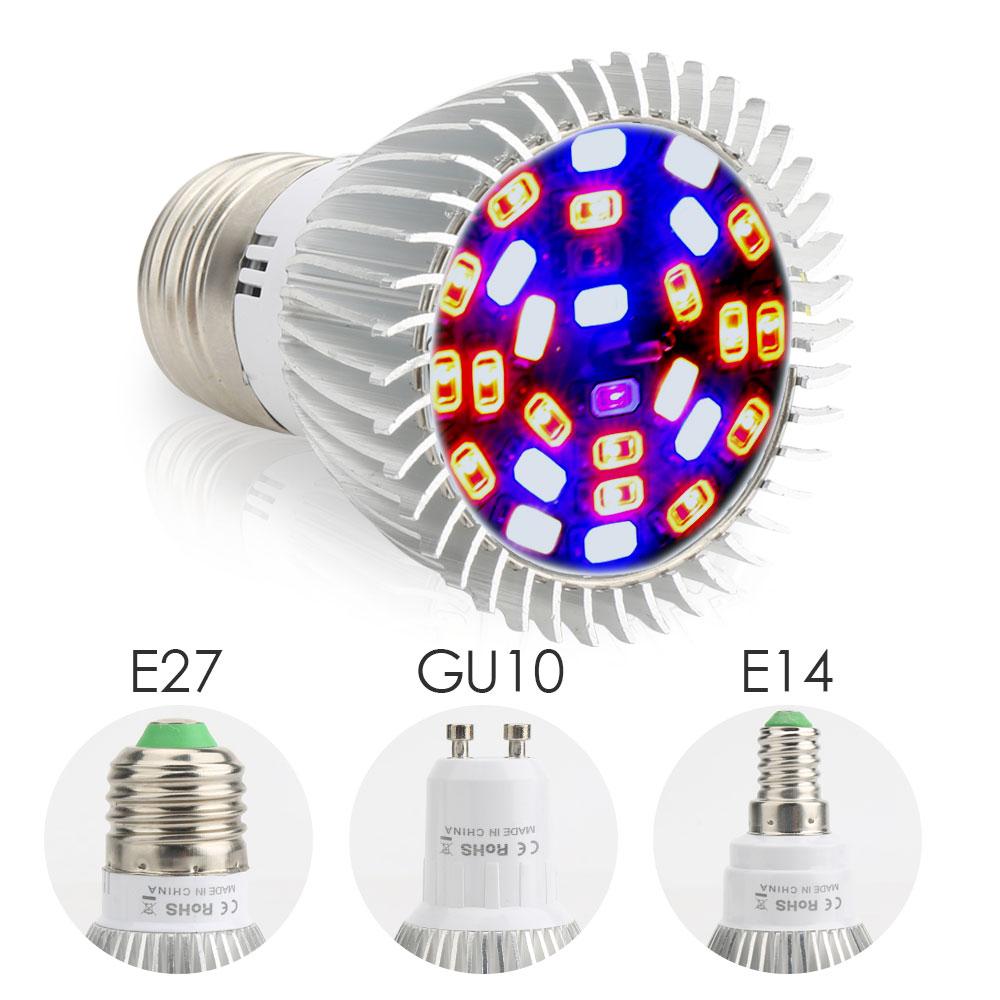 Rechercher Led Les Fabricants De Lampe Qualité Uv Des E14 Produits hostxQdrCB
