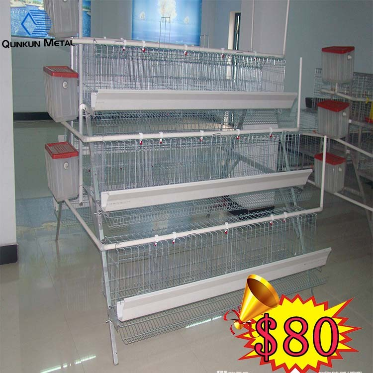 Low cost layer egg chicken cage poultry farm house designs for Low cost farm house