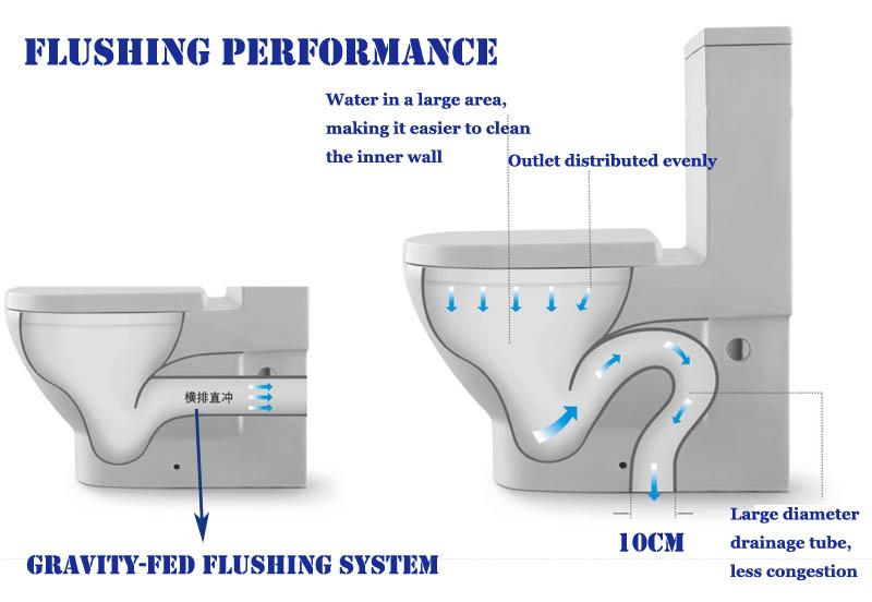 HS 8021 One Piece Italian Toiletsitting Toileteuropean Siphon Types Wc