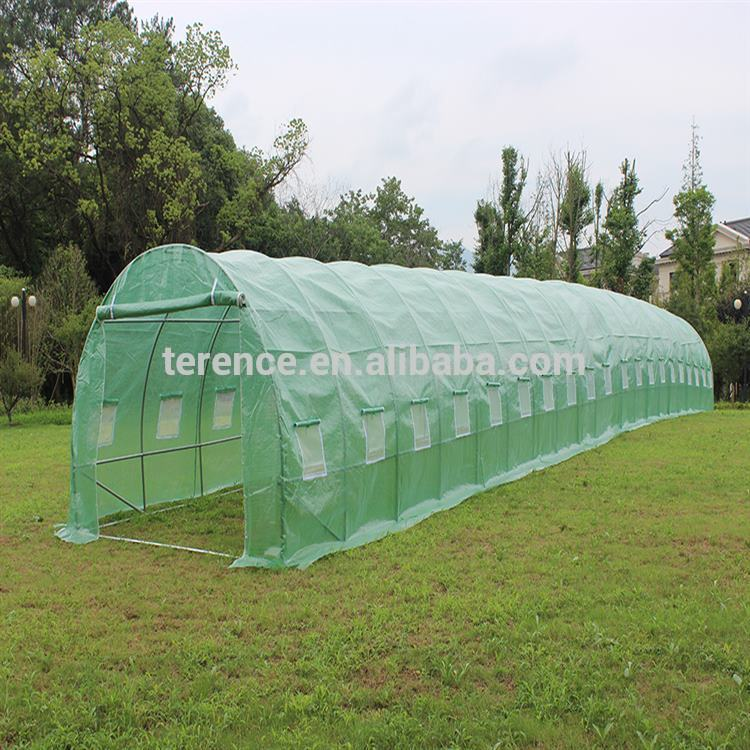 Indoor Walk In Greenhouse Indoor Walk In Greenhouse Suppliers and Manufacturers at Alibaba.com & Indoor Walk In Greenhouse Indoor Walk In Greenhouse Suppliers and ...
