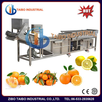 China Supplier Fruit Clean Machine/strawberry Washing /blueberry ...