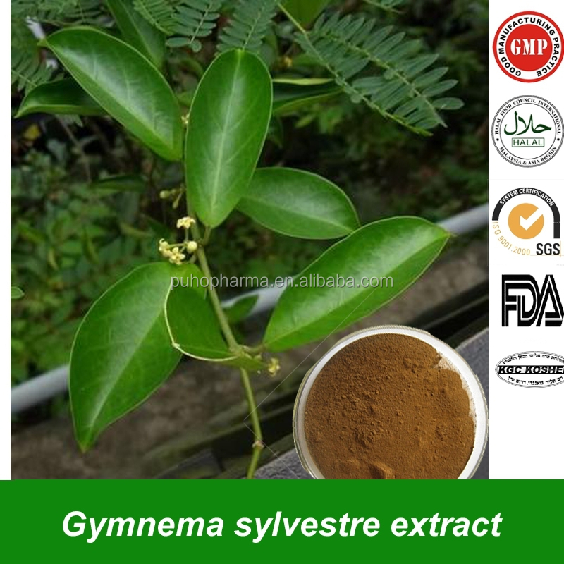lampunaya leaf extract as an acid This page about olives for gout and olive leaf extract for gout was last reviewed or updated on 5 november 2014 test tube studies show olive leaf extract inhibits the enzyme needed to.