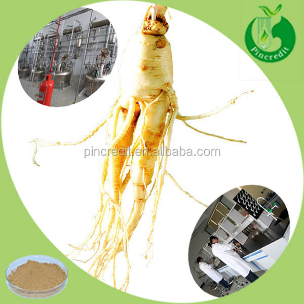 Ginseng extract powder for korean red ginseng extract drink