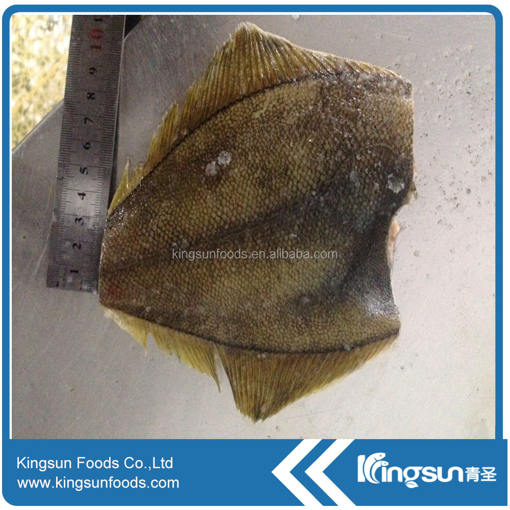 Hot sale frozen Whole round Yellow Fin Sole/Rock Sole (Limanda Aspera)