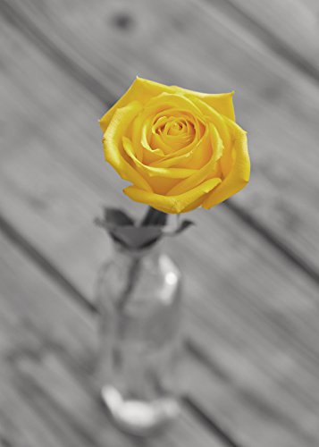 Cheap yellow flower decor find yellow flower decor deals on line at get quotations bathroom decor grey and yellow flower photography print bathroom wall art yellow rose mightylinksfo