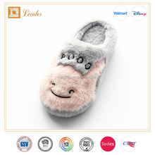 Fluffy Warm Plush Indoor slippers for Women