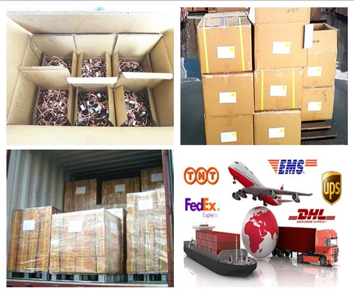 Supply 6v/9v/12v/1v8/24v motor Carbon Brush for auto blower ,high quality and free sample